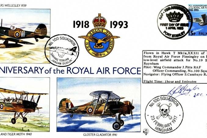 100 Squadron cover